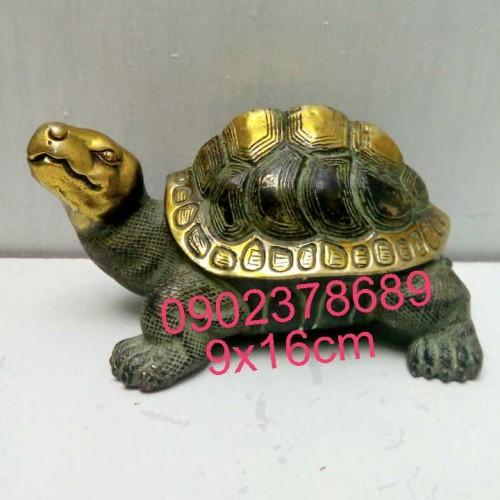 Rùa Cao 9cm